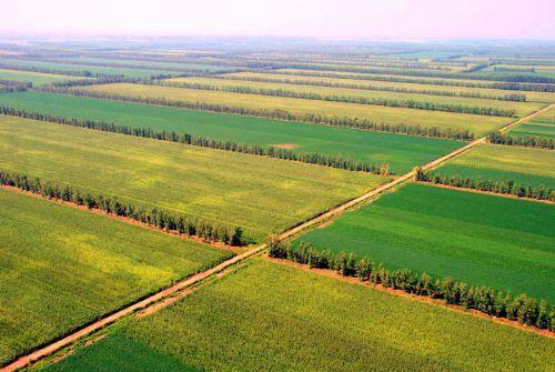 辽宁省农村土地综合整治监测监管系统